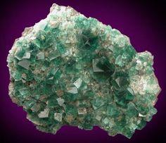 Fluorite  Origin: Rodgerley mine, Frosterly, Weardale, Co. Durham, England