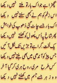 523 Best Poetry Images Urdu Poetry Manager Quotes Poetry Quotes
