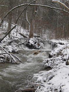David Rentfrow Winter Rush, via Flickr. -- 2010 Innsbrook Photo Contest, Innsbrook Resort, Missouri MO