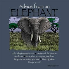 Elephant (wisdom, stability) The elephant has always been revered for its size, intelli-gence, and devotion to family. The Greek philosopher Aristotle admired the elephant for its great wisdom andintelligence. In Hinduism, the elephant-headed god Ganeshai Elephant Quotes, Elephant Love, Elephant Spirit Animal, Advice Quotes, Me Quotes, Irish Quotes, Qoutes, Animal Spirit Guides, Animal Totems