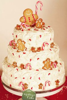 Christmas Cake + Gingerbread Cookies Création : LITTLE - Petits Gâteaux Crédit Photo : Julie Marie Gene Graphisme : Solenn As Sweet