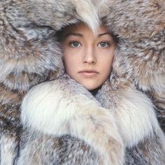 womenofthesixties:  Olivia Hussey