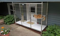 this is a brilliant idea. a cat patio or cattio. safer way to let the kitty get his outside fix. i'd like it better bigger so the kitty could actually run around. and maybe a plant or two in it.