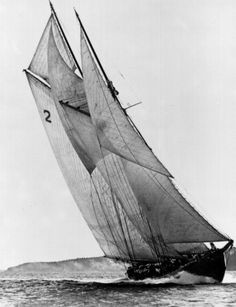 The Bluenose schooner, launched at Lunenburg, N. on Mar. am a Blue Noser! Born in New Glasgow, N. Classic Sailing, Classic Yachts, Catamaran, Canadian History, Sail Away, Kayaks, Wooden Boats, Tall Ships, Water Crafts