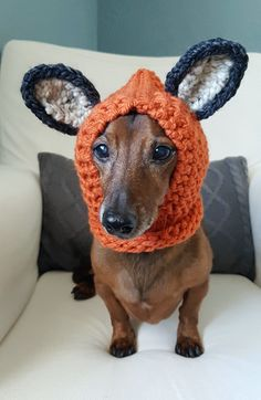 Keep your furry friend warm and cozy in this cute fox hood! Perfect for those chilly fall and winter walks or use as a costume. Handmade in chunky yarn in Pumpkin . Made for a small dog. Model is a Miniature Dachshund weighing approx. 12.5lbs. Hood is stretchy and could fit a slightly larger breed.