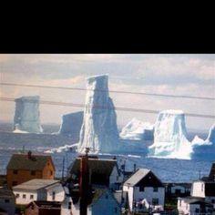 Iceburgs in Bonavista Bay, Newfoundland, Canada Newfoundland Icebergs, Newfoundland Canada, Newfoundland And Labrador, Alberta Canada, O Canada, Canada Trip, Ontario, Vancouver, Quebec