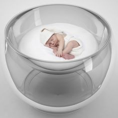 Baby bubble bed