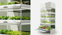 The Nano Garden Lets You Grow Veggies Right in Your Kitchen via Brit + Co.