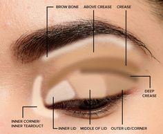 Makeup Tips for Beginners: Basic Eyeshadow Placement & Eye Makeup Diagram