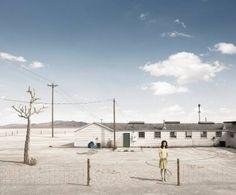 "Saatchi Art Artist Dean West; Photography, ""Tree - Artist Proof # 1 of 2"" #art"