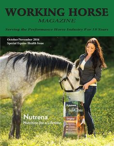 The brand new issue of The Working Horse Magazine is now available! Thank you to Nutrena Horse Feed for providing this issue's beautiful cover shot!  Visit www.workinghorsemagazine.com to read now. October/November 2016 FEATURED IN THIS ISSUE This issue features a wide offering of articles regarding the health and well-being of horses - from DNA analysis that aids in breeding to trailer management for safe travel.