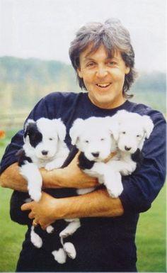 Paul McCartney & The Pups