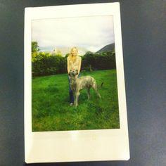 Instax mini- Caoimhe and her scottish deerhound Angus Scottish Deerhound, Minis, Painting, Art, Painting Art, Paintings, Kunst, Paint, Draw