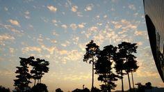 Sky of fall in korea