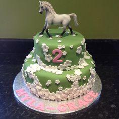 Horse Cake                                                       …