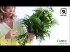 Adomex Green Inspiration made together with Bloomtube. DIY - YouTube