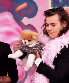 Harry with a puppy on Jimmy Kimmel Live