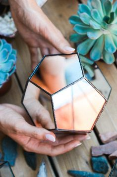 Beautiful from all angles. Upgrade your terrarium to a mirrored version.