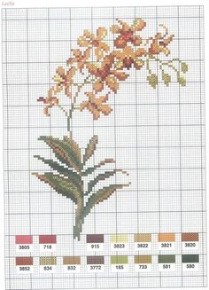 [flor-ponto-cruz-grafico-42%255B2%255D.jpg]