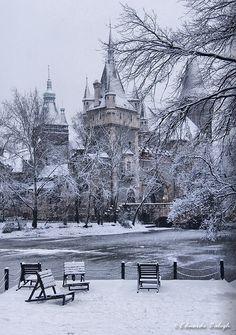 Castle of #Vajdahunyad, #Budapest, #Hungary