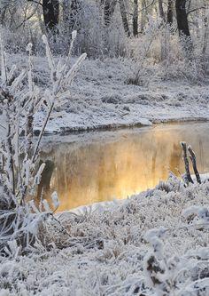 Winter Wonderland...   Photo: public domain