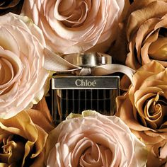 Chloé.  Eau de parfum. Fresh, green, top notes with a heart of velvety rose. Base notes of warm amber, honey, and cedarwood.