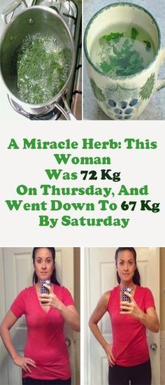 A Miracle Herb: This Woman Was 72 Kg On Thursday, And Went Down To 67 Kg By Saturday Parsley is commonly used to improve the taste of our dishes, but this health-boosting herb provides more than that. --sponsor-- For one thing, it's a powerful diuretic that effectively treats urinary tract infections and other kidney-related health …