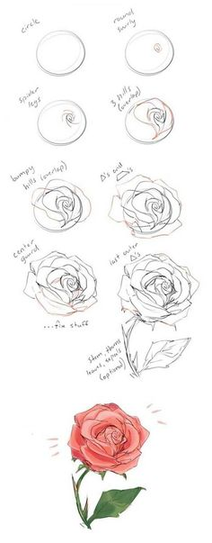 how to draw a rose step by step drawing guide. Learn how to draw flowers like roses of lilies and turn them into really beautiful wall art. #drawings #howtodraw