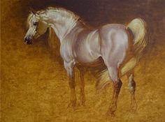 Cuadros Modernos Pinturas : Caballos, Tigres y Venados, Animales ...