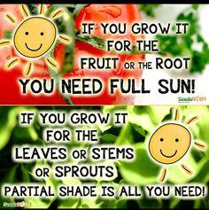 Gardening Tips...