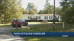 A child was transported to WakeMed with serious injuries after being bitten by a PIT BULL! in Kenly Tuesday night.