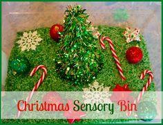 Christmas Sensory Bins {The Sunday Showcase} ~ Learn Play Imagine
