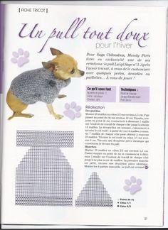 tricoter un manteau pour chien