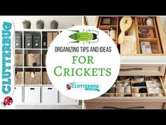 Crickets tend to be 'traditionally' organized and prefer minimal visual clutter in their homes and work spaces.
