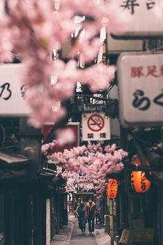 Shinjuku-ku // Nicholas La #Japan