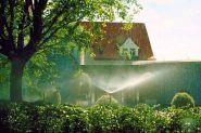 gartenbewaesserung4 Aquarium, Garden Irrigation System, Save Water, Agriculture, Scenery, Goldfish Bowl, Fish Tank, Aquarius