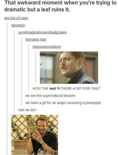 We are the Supernatural fandom, we have a gif for everything... we have a gif of an angel caressing a pineapple. Bahaha :D