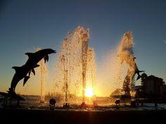 Dolphin fountain. Marina Jack, Sarasota, Florida