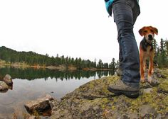 Helpful tips on what to bring when you hike with your dogs, plus great places around the US to take them!