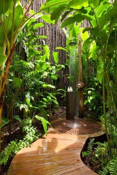Tropical Landscape/Yard with Pathway, Fence, Outdoor shower