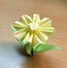 Origami flower ball origami pinterest flower ball and origami mightylinksfo