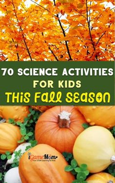70 Autumn Science Activities for Kids to Do This Fall Elementary Science Experiments, Science Activities For Kids, Stem Science, Science Fair Projects, Stem Activities, Science For Kids, Creative Teaching, Teaching Tips, Steam Learning