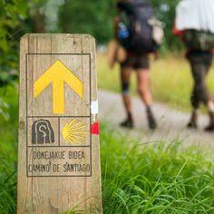 900 Ideas De Camino De Santiago En 2021 Camino De Santiago Santiago Camino