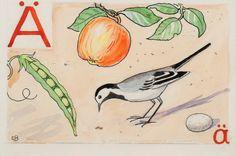 by elsa beskow Edith Holden, Nordic Art, Scandinavian Art, Learn Swedish, Elsa Beskow, Vintage School, Moomin, Initial Letters, Alphabet