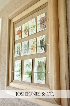 How to Save Money on Home Decor • Ideas & Tutorials! Including this decorative idea using seed packets from 'josiejones & co'.
