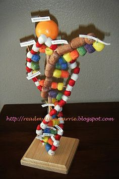 dna projects