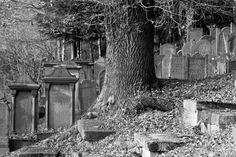 Jewish Cemetery in Adelebsen
