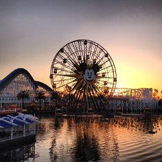 Disneyland dusk