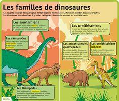 Les familles de dinosaures