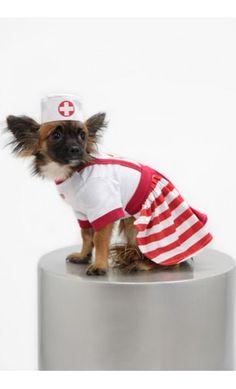 $9.95 Pet Nurse Halloween Costume